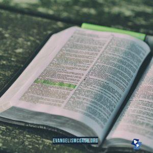 Open Bible, Every Gospel COnversation in Acts
