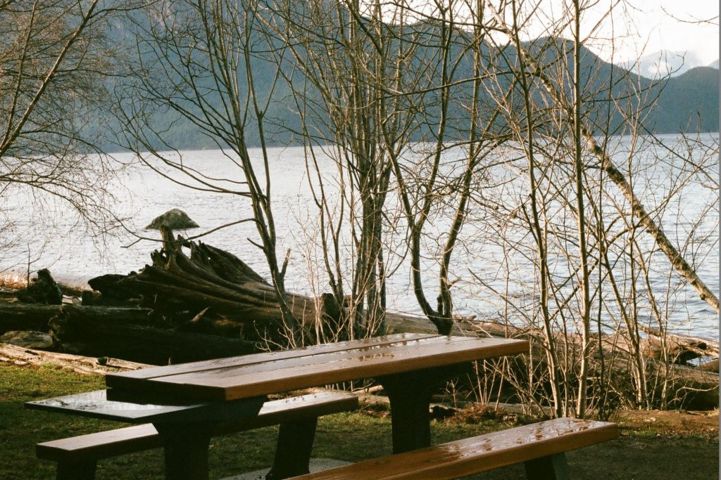 A picnic table by the lake, suggesting where this conversation took place.