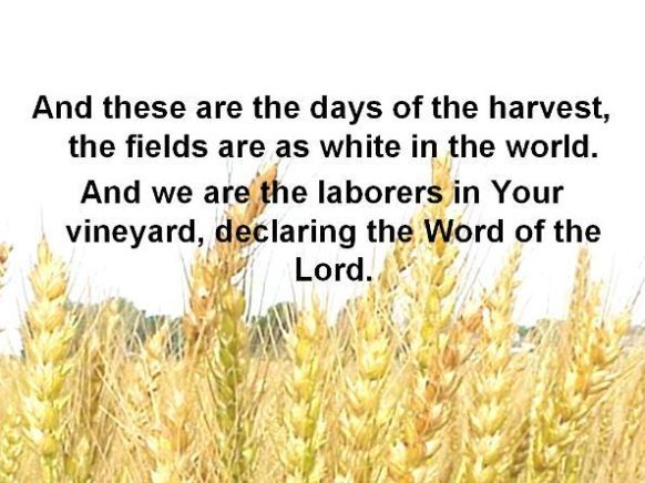 And these are the days of the harvest, the fields are as white in the world.  And we are the laborers in your Vineyard, declaring the Word of the Lord.